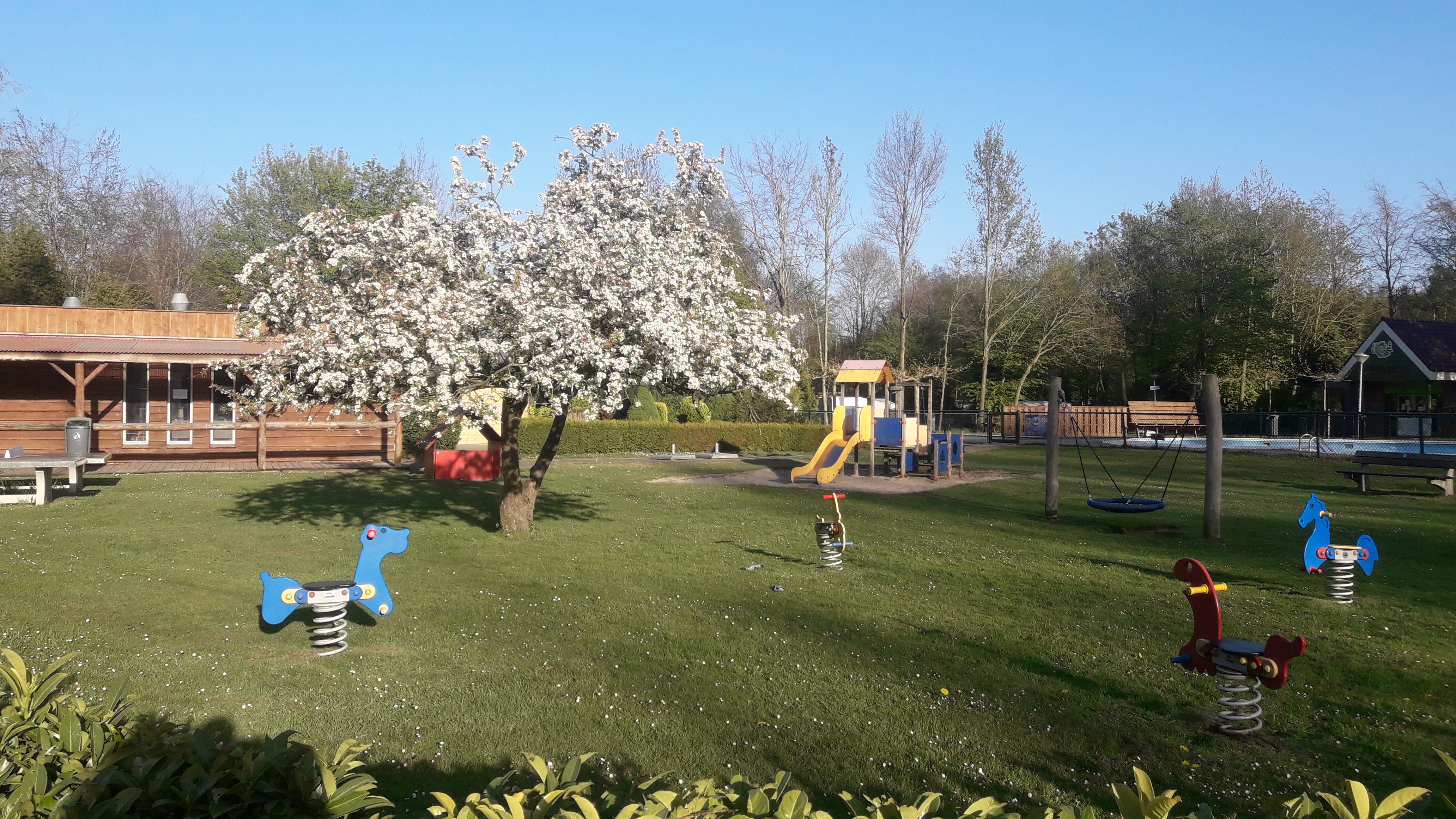 Speeltuin op Vakantiepark 't Urkerbos